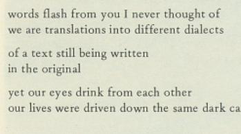 excerpt from Adrienne Rich poem